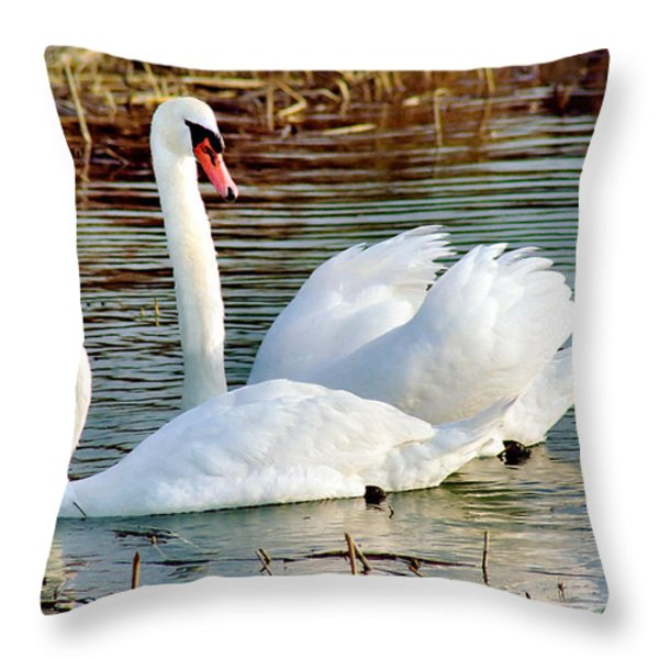 Swans Throw Pillow by Gary Heller