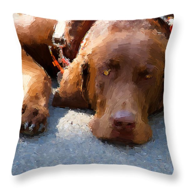 Sweet Chocolate Throw Pillow by Alice Gipson