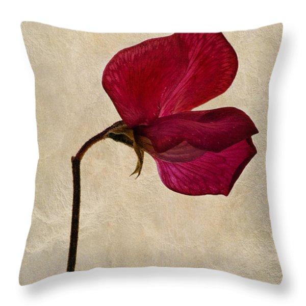 Sweet Textures Throw Pillow by John Edwards