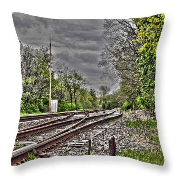 Switch Throw Pillow by Alan Look