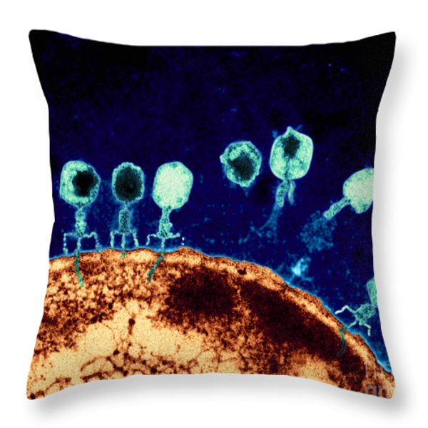 T-bacteriophages And E-coli Throw Pillow by Eye Of Science