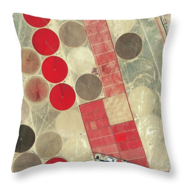 Tadco Farm Saudi Arabia Satellite Throw Pillow by GeoEye