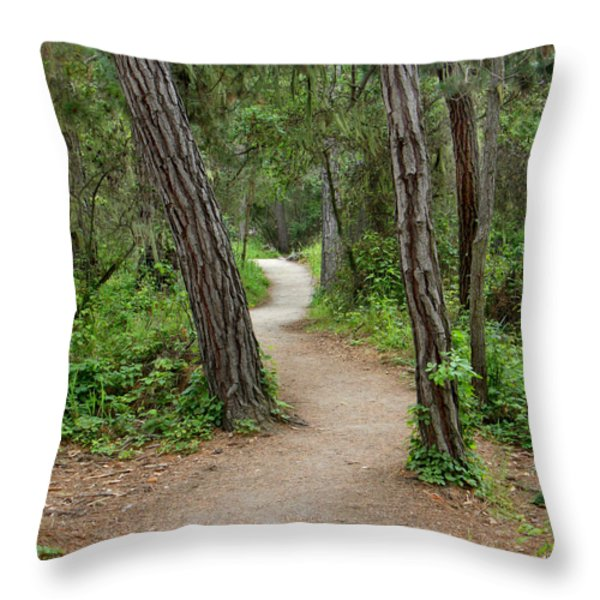 Take A Hike Throw Pillow by Art Block Collections