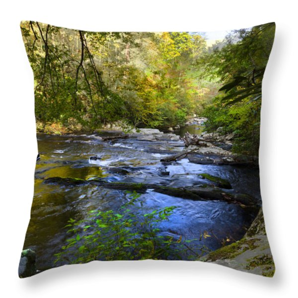 Take me to the River Throw Pillow by Debra and Dave Vanderlaan