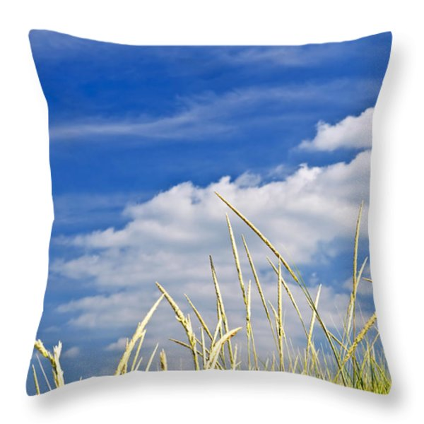 Tall grass on sand dunes Throw Pillow by Elena Elisseeva