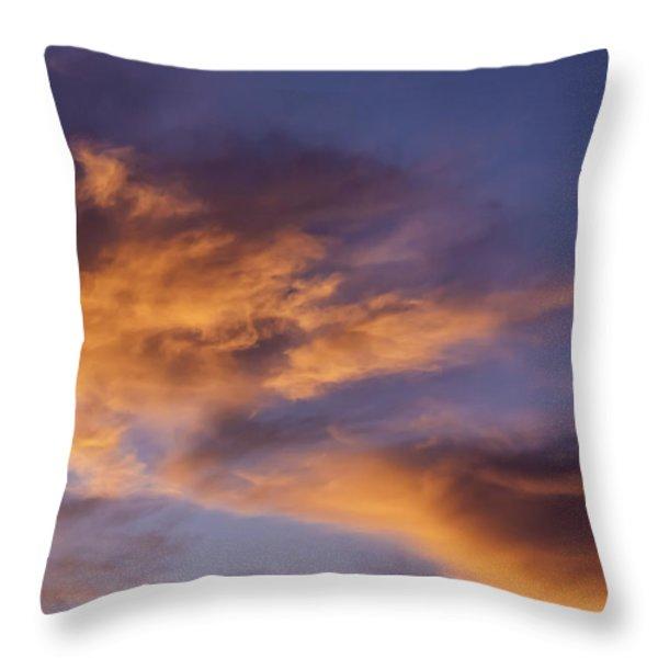 Tangerine Swirl Throw Pillow by Caitlyn  Grasso