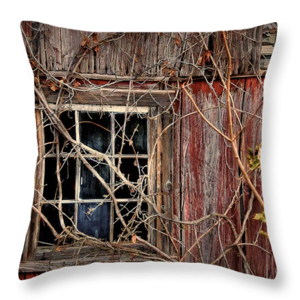 Tangled Up In Time Throw Pillow by Lois Bryan