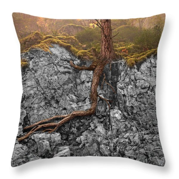 Taproot Throw Pillow by Mary Jo Allen