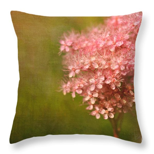 Taste of Summer Throw Pillow by Reflective Moment Photography And Digital Art Images