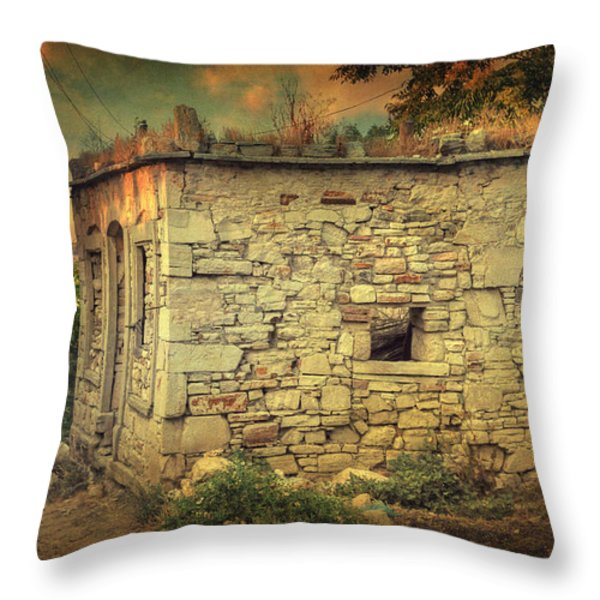 Tavern Throw Pillow by Taylan Soyturk