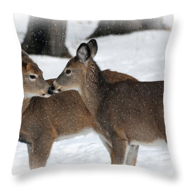 Tender Sentiment Throw Pillow by Christina Rollo