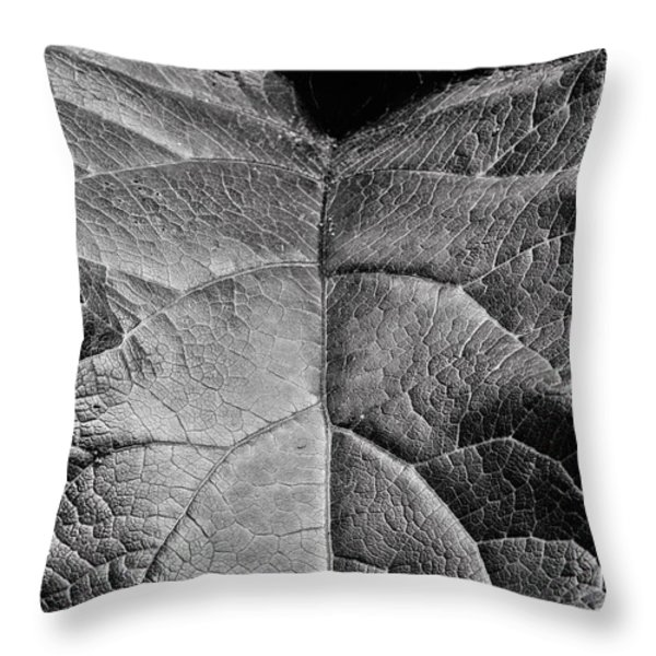 Terrestrial  Throw Pillow by JC Findley