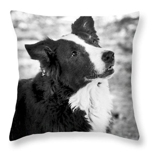 Tessie 7 Throw Pillow by Rich Franco