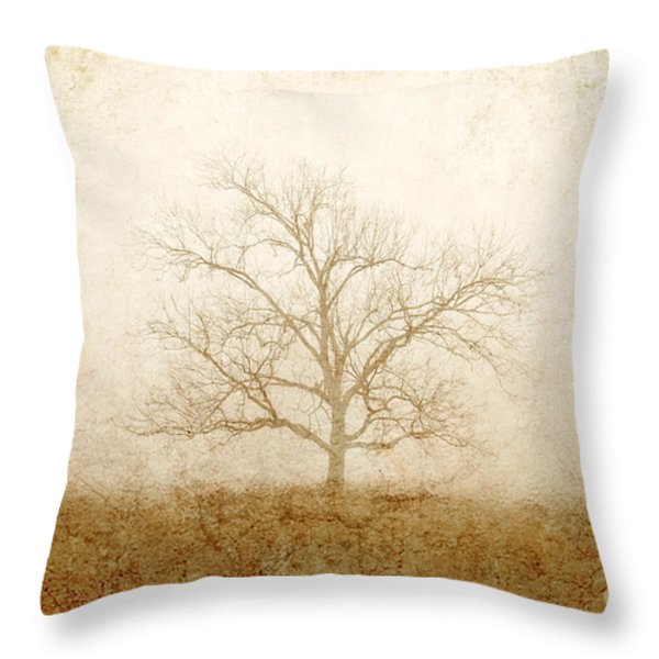 Test of Time Throw Pillow by Scott Pellegrin