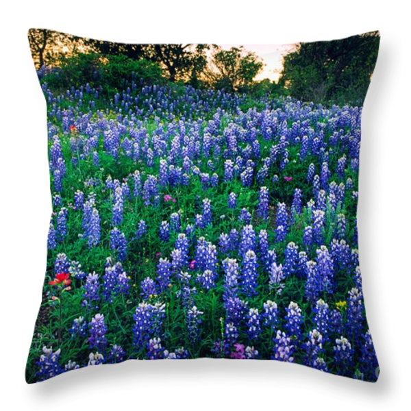 Texas Bluebonnet Field Throw Pillow by Inge Johnsson