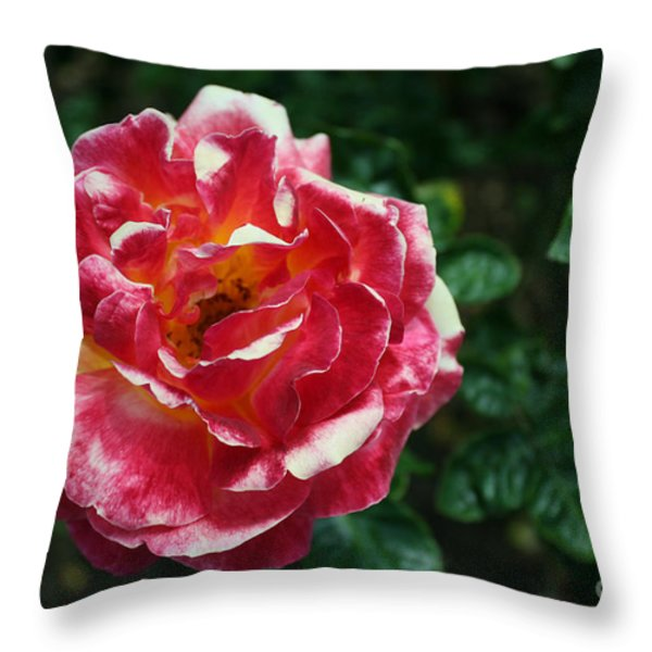Texas Centennial Rose Throw Pillow by Jose Valeriano