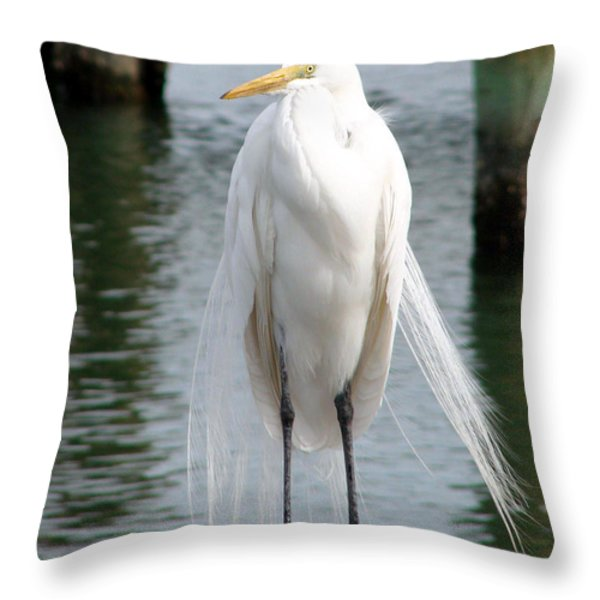 Texas Great White Egret Throw Pillow by Linda Cox