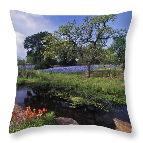 Texas Hill Country - FS000056 Throw Pillow by Daniel Dempster