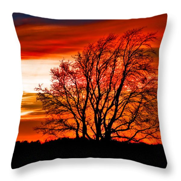 Texas Sunset Throw Pillow by Darryl Dalton