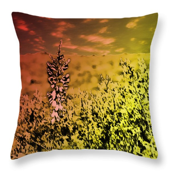 Texas Yucca Flower Throw Pillow by Bartz Johnson