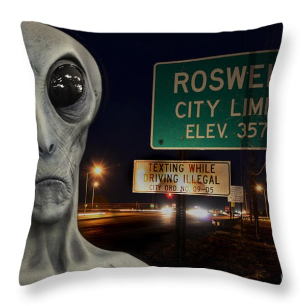 Texting Causes Crashes Throw Pillow by Bob Christopher