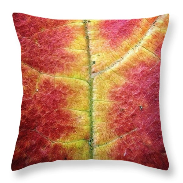 Textural Intricacy Throw Pillow by Natasha Marco