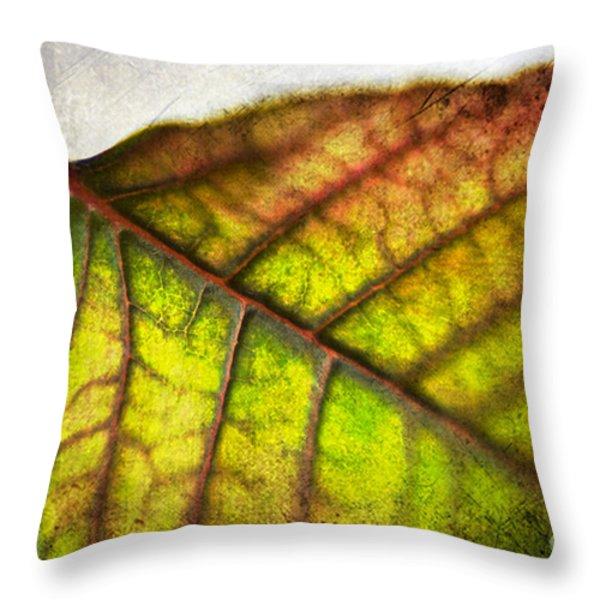 Textured Leaf Abstract Throw Pillow by Scott Pellegrin