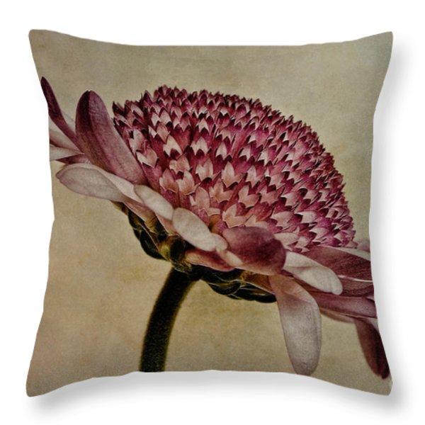 Textured Mum Throw Pillow by John Edwards