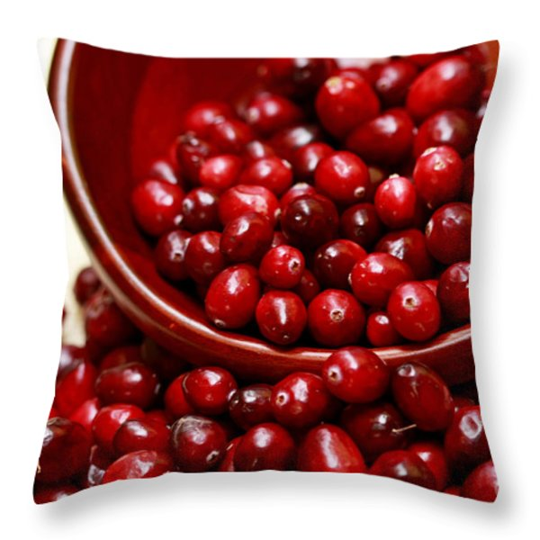 Thanksgiving Delight Throw Pillow by Inspired Nature Photography Fine Art Photography