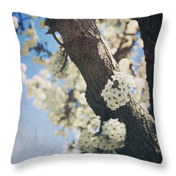 That March Throw Pillow by Laurie Search