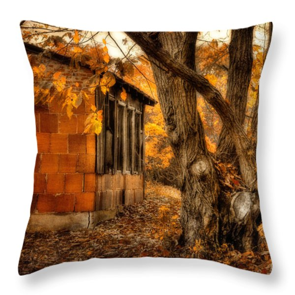 That Which Defines us Throw Pillow by Lois Bryan