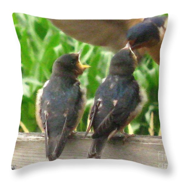 The Adult Barn Swallow Arrives With Lunch For One Throw Pillow by J McCombie
