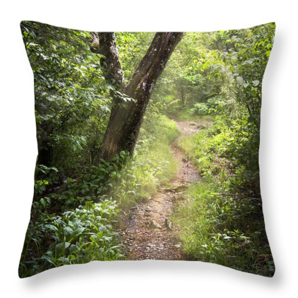 The Appalachian Trail Throw Pillow by Debra and Dave Vanderlaan