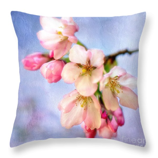 The Arrival Throw Pillow by Reflective Moment Photography And Digital Art Images
