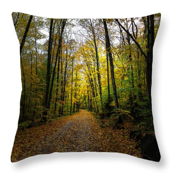 The Back Roads of Autumn Throw Pillow by David Patterson