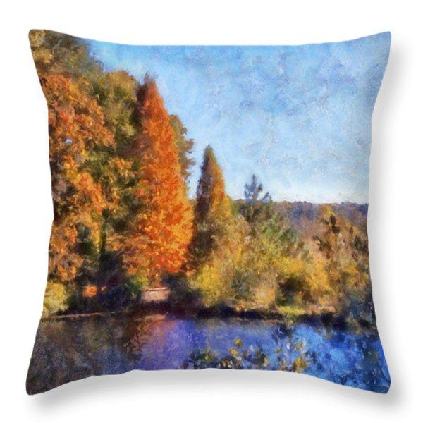 The Bald Cypress Throw Pillow by Daniel Eskridge