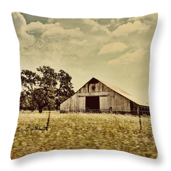 The Barn 2 Throw Pillow by Cheryl Young