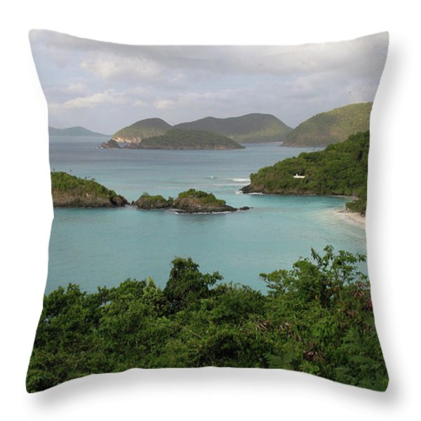 The bay Throw Pillow by Corinne Rhode