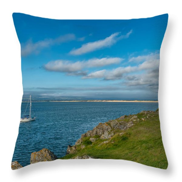 The Beacon  Throw Pillow by Adrian Evans