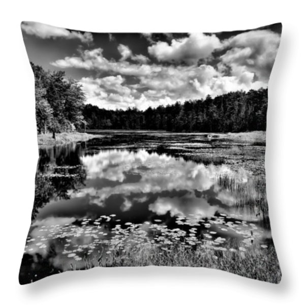 The Beautiful Fly Pond on Rondaxe Road - Old Forge NY Throw Pillow by David Patterson
