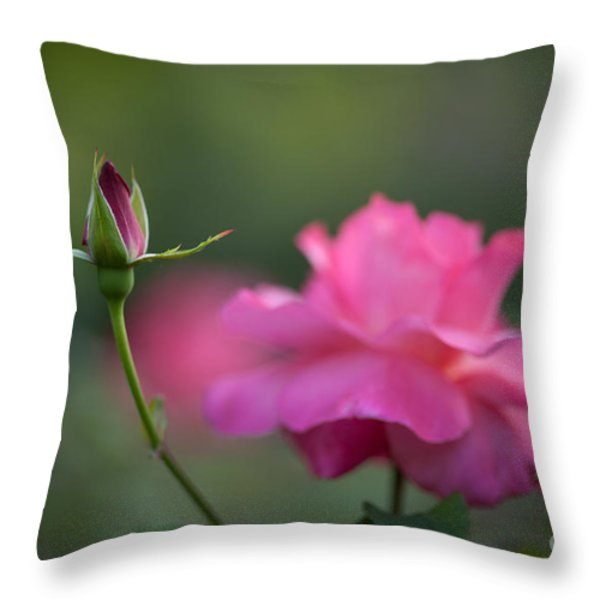 The Beauty And The Promise Throw Pillow by Mike Reid