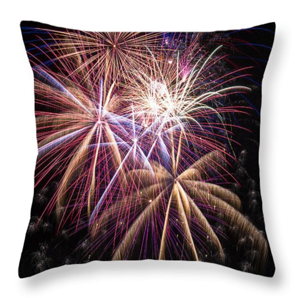 The beauty of fireworks Throw Pillow by Garry Gay