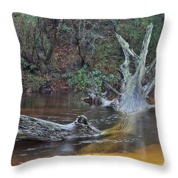 The Black Water River Throw Pillow by JC Findley