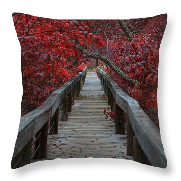 The Boardwalk Throw Pillow by Douglas Barnard