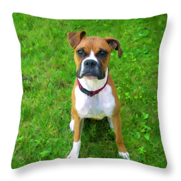 The Boxer Throw Pillow by Donna Doherty