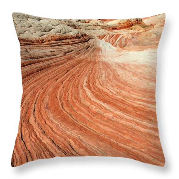 The Brilliance Of Nature 3 Throw Pillow by Bob Christopher