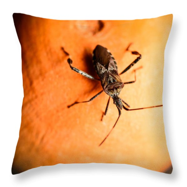 The Bug Throw Pillow by Marco Oliveira