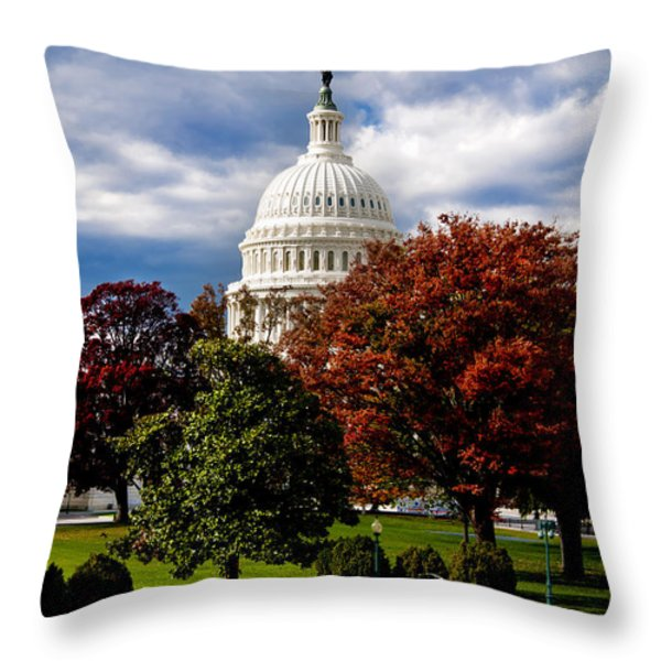 The Capitol Throw Pillow by Greg Fortier