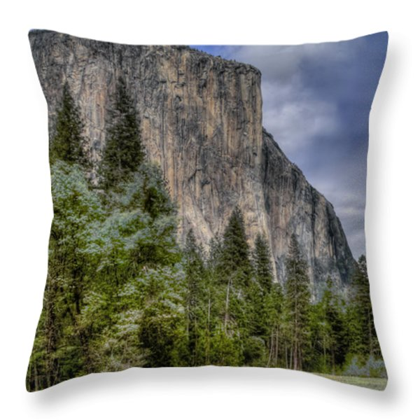 The Captain Throw Pillow by Bill Gallagher