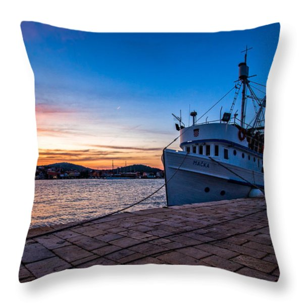 The Cat Throw Pillow by Davorin Mance